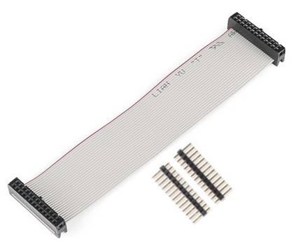 Kabel GPIO pro Raspberry B - 2xzásuvka (26pin) 20cm šedý + piny