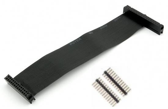 Kabel GPIO pro Raspberry B+ - 2xzásuvka (40/26pin) 20cm šedý + piny